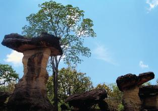 Pha_Taem_National_Park